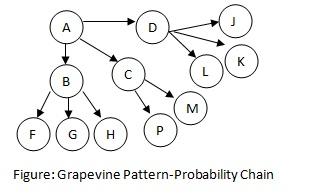 Grapevine Cluster Chain